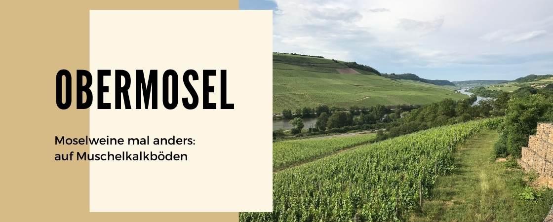 Weinanbaugebiet Obermosel in Deutschland