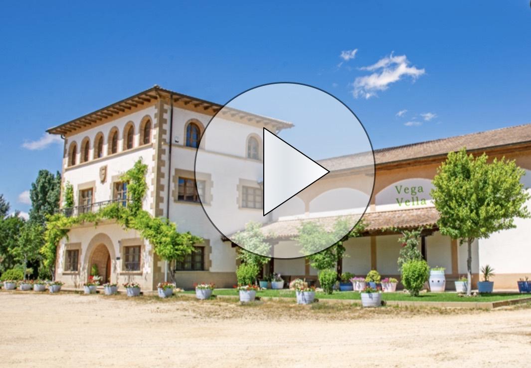 Bodegas Cornelio Dinastia Blanco  Fermentado En Barrica Rioja D.O.Ca. 2017