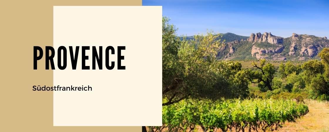 Weinanbaugebiet Provence in Frankreich
