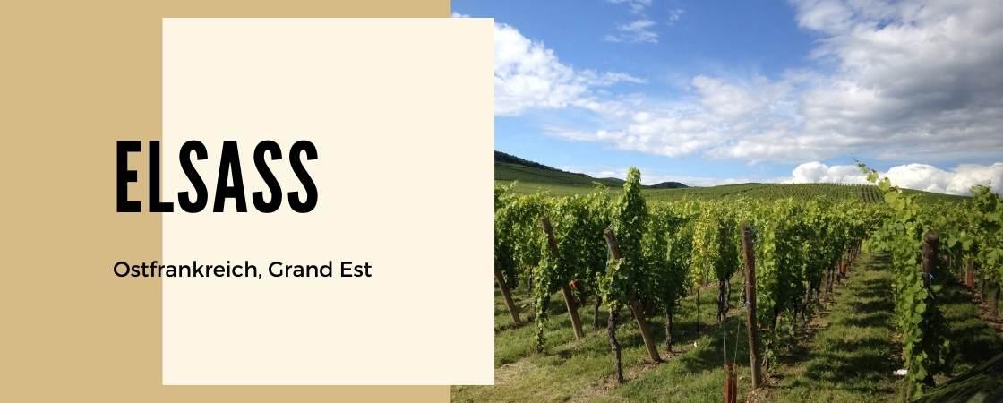 Weinanbaugebiet Elsass in Frankreich