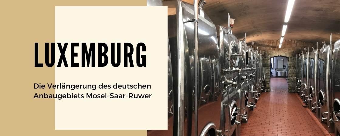 Weinanbaugebiet Luxemburg