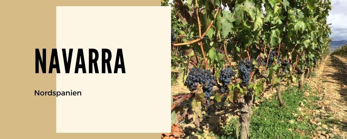 Weinanbaugebiet Navarra in Spanien