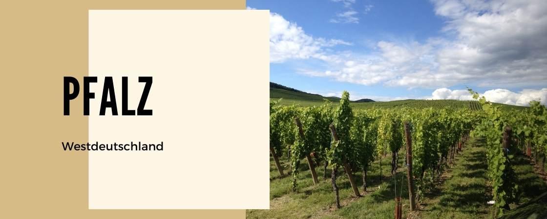Weinanbaugebiet Pfalz in Deutschland