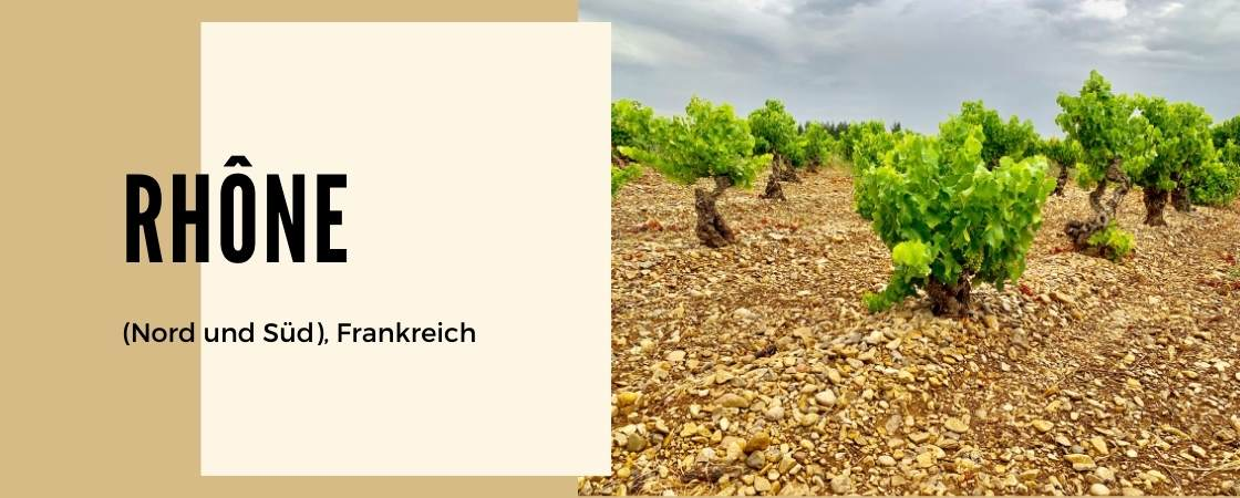 Weinanbaugebiet Rhone Nord und Süd in Frankreich