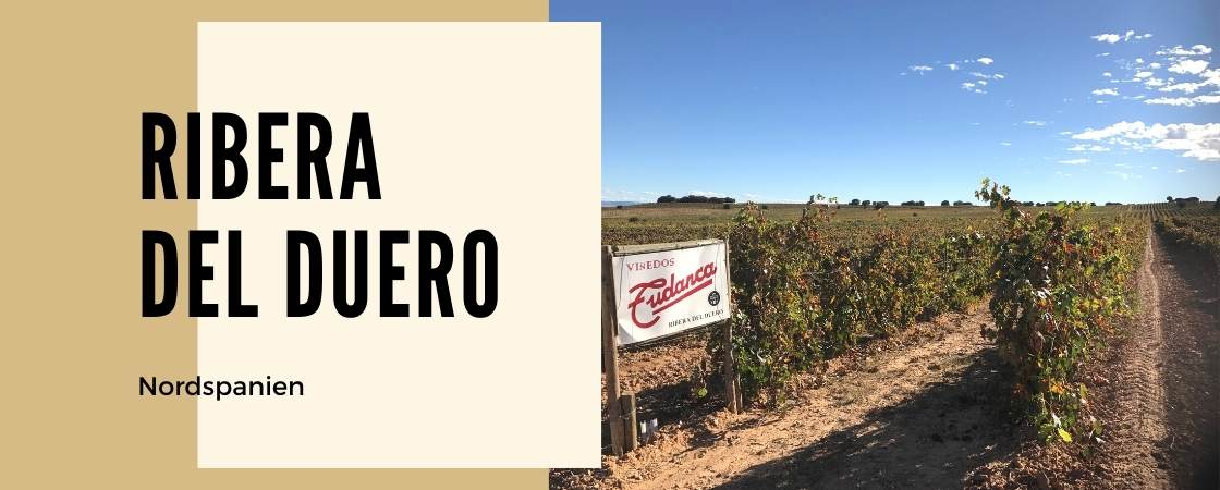 Weinanbaugebiet Ribera del duero in Spanien